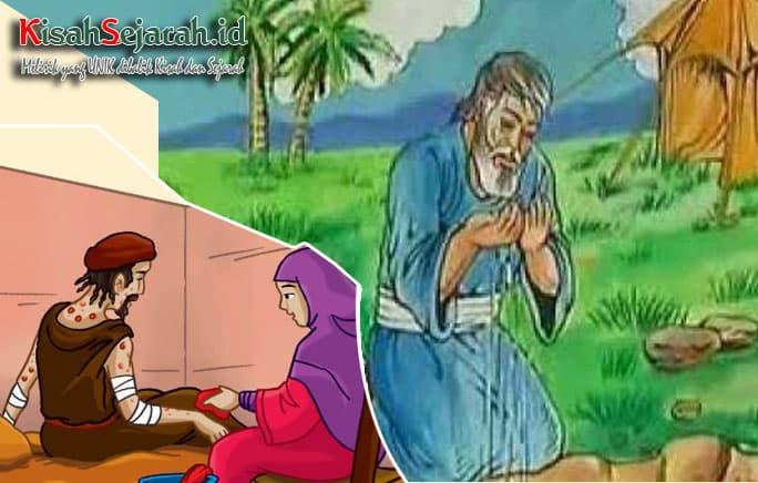 kisah-nabi-ayyub-a-s